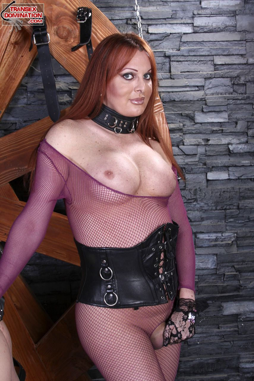 Bear B. recommend best of williams tranny wendy
