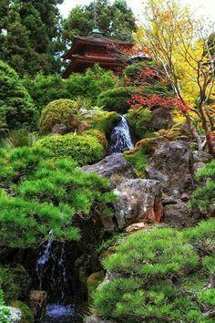 Geneva reccomend Asian garden socorro